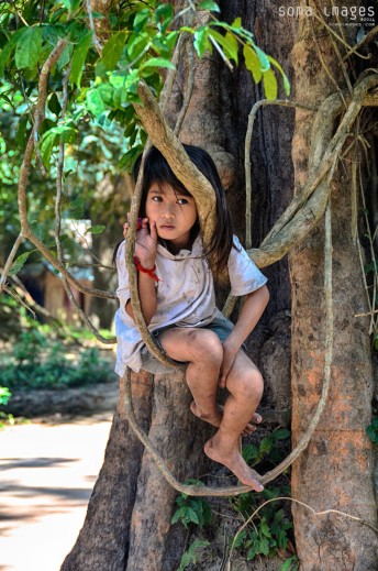 Young girl sitting in tree, Angkor Wat, Cambodia