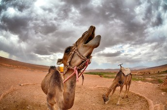Travel Photography Tours